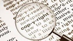 Copyright Infringement 101