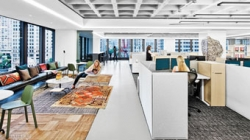 Surviving the Open Office Plan and Providing the Fix