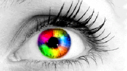 How Do People With Color Blindness See The World?