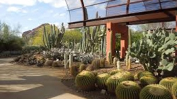Botanical Garden's Dinner on the Desert – April 27
