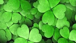 St Patricks Day – March 17
