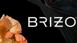 Brizo introduces new collection – August 11